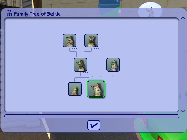 Here's Selkie's family tree