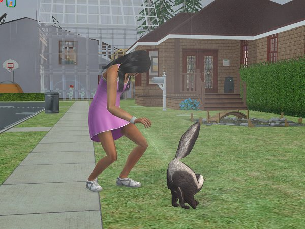 Deloris Miller discovers why you don't pat skunks