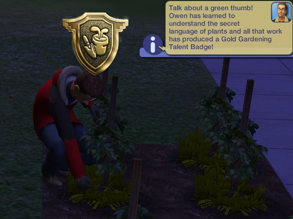 Owen gets his Gold Gardening badge