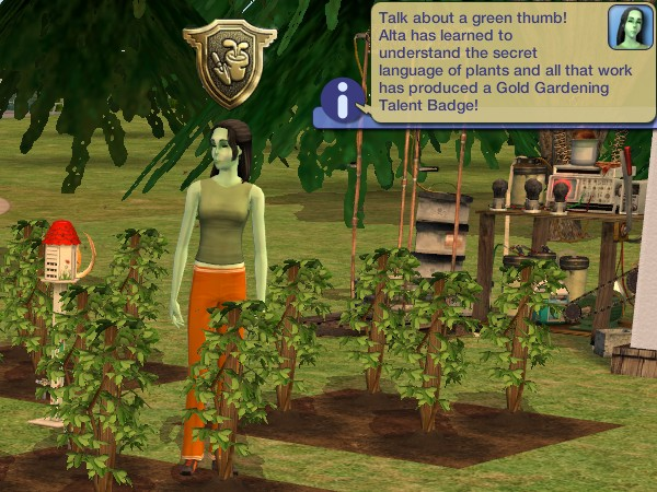 Alta gets her Gold Gardening badge