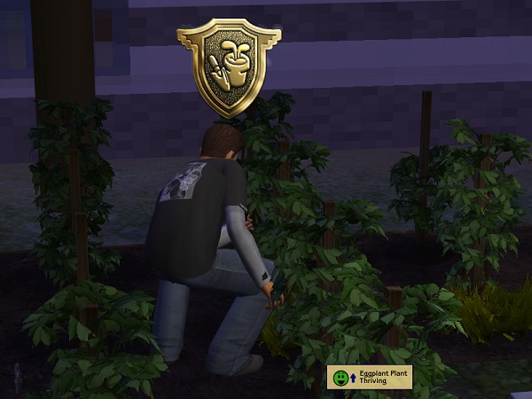 Rory gets his Gold Gardening badge